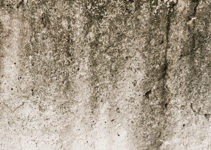 Eliminare l'umidità in bagno in maniera facile e veloce
